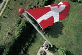 Glasfiberflagsang, flagstang, Dannebrog